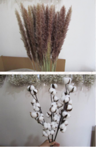 Pampas Grass Quality Control Inspection Service